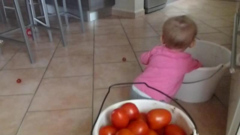Margunya pomidorki 3