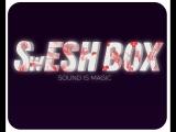 SwESH_BOX битбокс на площади революции