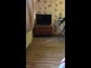 Джалал Гянджинский Live