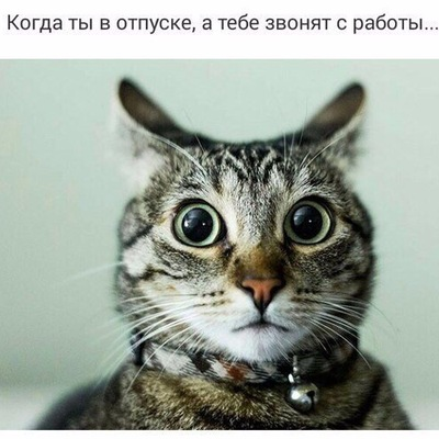 Евгений Лютый