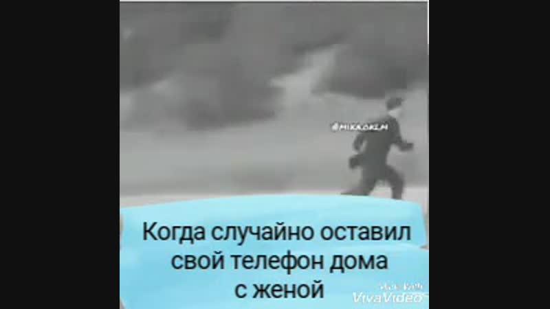спринтер mp4