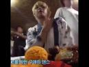 """Taehyung's ᴍᴀɴɢᴏ ᴍᴀɴɢᴏ ᴍᴀɴɢᴏ ᴡᴏᴡ ᴍᴀɴɢᴏ ᴊᴜɪᴄᴇ"""""""