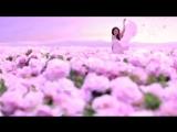 Soraya Saraswati Terry Oldfield - Dreamer