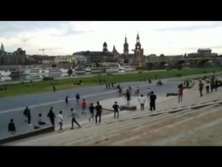 Dresden_ flüchtlinge randalieren und treten hunde an der elbe