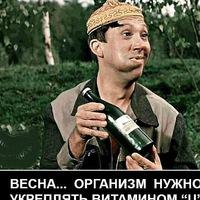 Анкета Сергей Лапшин