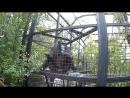 Таганский парк львов