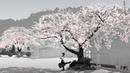 Most Beautiful Music: Sakura by Bob Bradley Thomas Balmforth