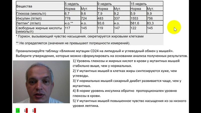 Проанализируйте таблицу Влияние мутации CD24 на липидный и углеводный обмен у мышей