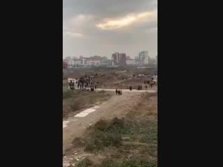 Китаец, протестуя против сноса своего дома, открыл огонь из фейерверка по экскаватору строителей.