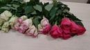 Собираем букет из розы 129, видеоурок, мастер класс. Часть 1