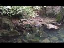 Воронцовский парк, Алупка