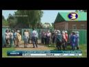 В Стерлитамакском районе лисицы убивают деревенских кур