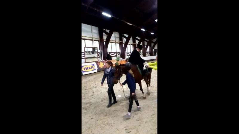 13 Всероссийский фестиваль конного спорта Золотая осень 2