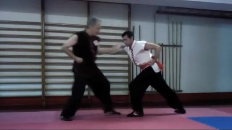 Técnicas básicas, Choy li fut.