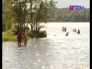 В жару люди тянутся к водоемам не обратишь внимания на запрет купаться жди беды