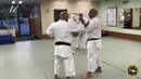 Yakusoku Kumite 7 Fine Point: Press the Forearm