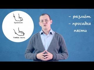 Особенности развития ОДА крупных и гигантских пород собак. Профилактика. ФК KORIS. Для связок и суставов.
