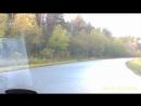 Лоси на дороги 13.10.18-Обрезка 01