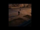 Видео жестокого убийства в Волжском