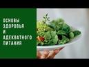 Основы здоровья и адекватного питания