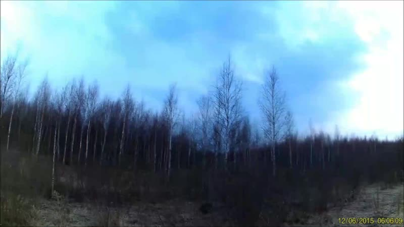 Охота на Орловщине Часть 2 Счастливый вальдшнеп 0 mp4