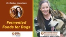 Ферментированный корм для собак / Fermented Foods for Dogs