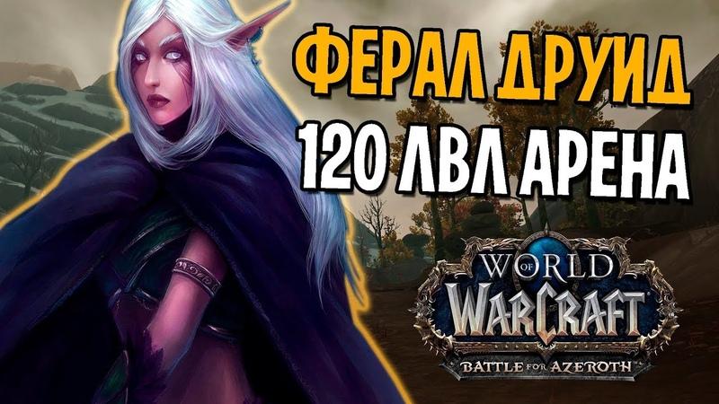 ФЕРАЛ ДРУИД 120 LVL НА АРЕНЕ | WOW: BATTLE FOR AZEROTH