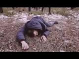 Жизнь Такая Торба Трб клип скачать 11 тыс. видео найдено в Яндекс.Видео.mp4