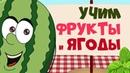 ФРУКТЫ и ЯГОДЫ 🥝🍓🍉 для детей развивающие мультфильмы для самых маленьких учим слова