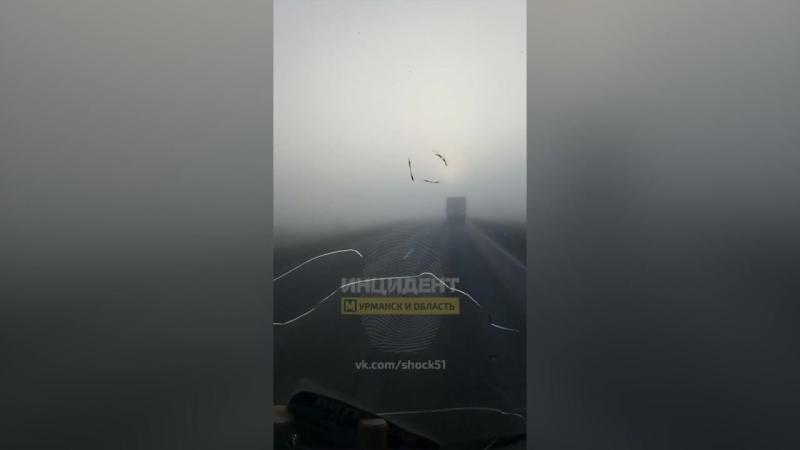 Туман. Мончегорск - Оленегорск. 22.06.2018