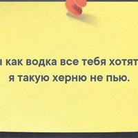 Анкета Шавкат Акпаралиев