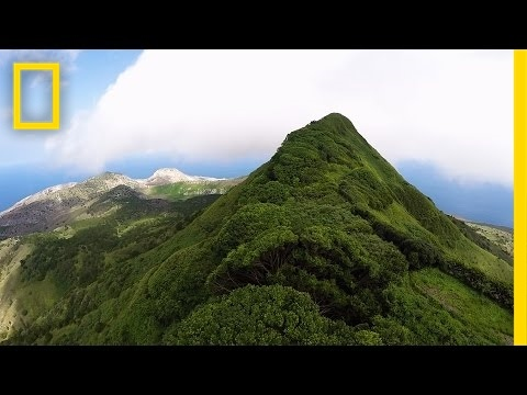Once This Island Had Just One Tree Look at It Now National Geographic