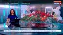 Новости на Россия 24 • В Оренбургской области начали брать пробы ДНК у родственников погибших в авиакатастрофе