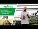 Лучшие органические удобрения для вашего сада