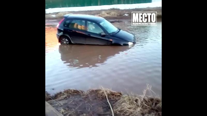 Калина утонула в луже в Чепецке