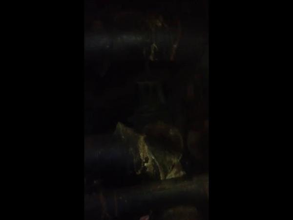 трубы прохудились на Мичурина 141