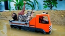 Truck crossing on Deep Water with Learn Wild Animals Toys