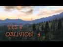 Oblivion 4: Найдешь Дж'Скара?