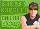Виктор Королёв Вишня в саду