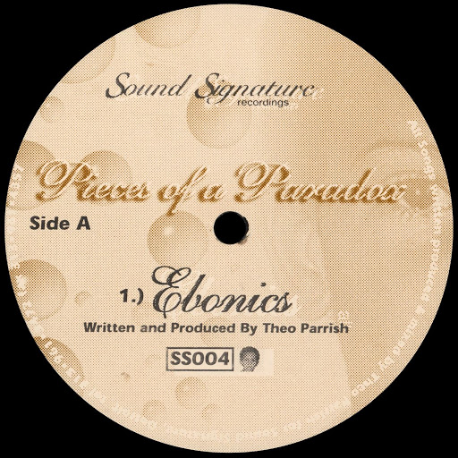 Theo Parrish альбом Pieces of a Paradox
