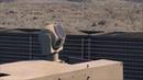 Корпорация Raytheon показала анимацию, в которой демонстрируется работа лазерной системы, способной перехватывать гиперзвуковые ракеты