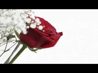 Demis Roussos - Cancion de Boda