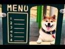 Henlo, may i take ur order?