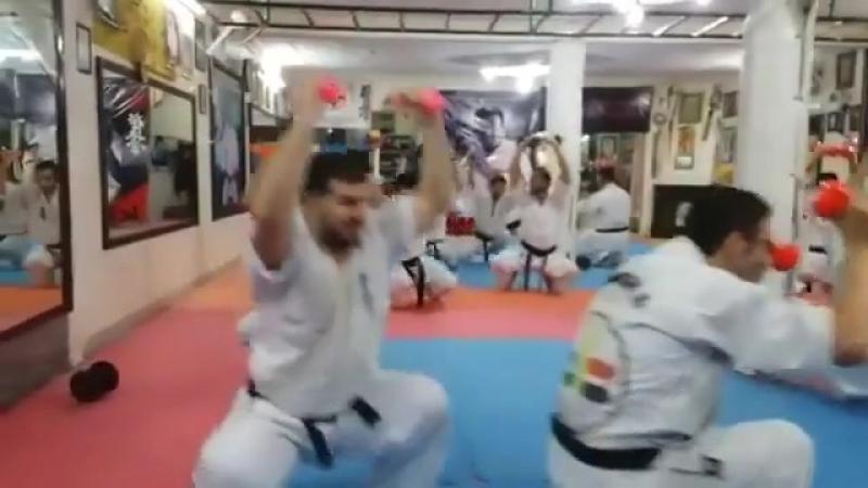 СФП бойца Кёкусинкай карате. Как выковать сильный дух, сделать сильными ноги и руки. Подготовка бойца vk.com/oyama_mas