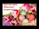 С Красной Горкой Россошь ЗАГС