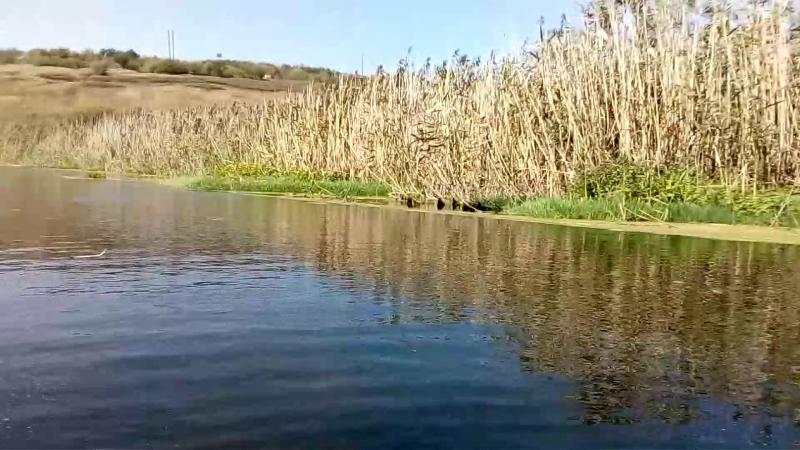 новые путешествия. по реке сухая Россошь.
