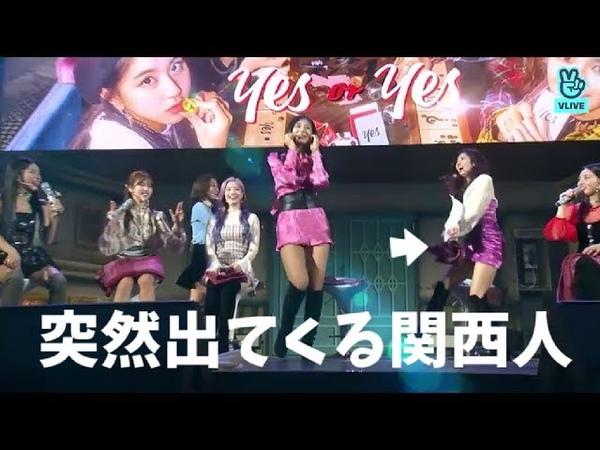 TWICEメンバーの可愛いダンス《RONDOM DANCE JYP》