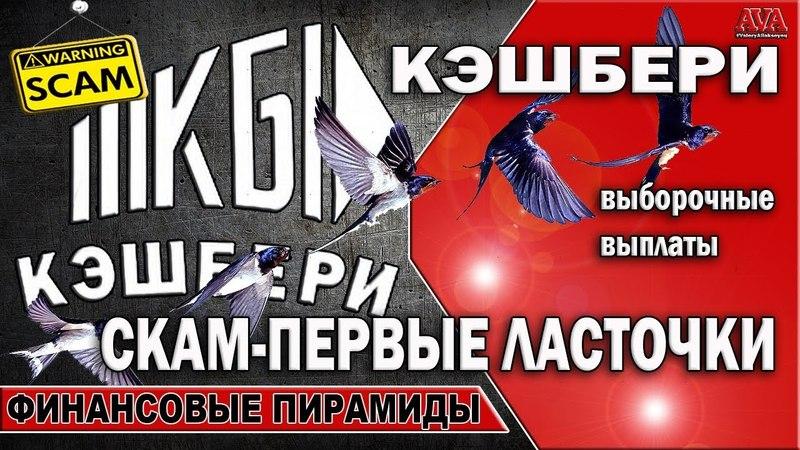 ⛔ Кэшбери Первые ласточки СКАМа полетели Регламент нарушается Выплаты выборочные ValeryAliakseyeu