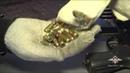 Задержание в Рязанской области подозреваемых в торговле оружием