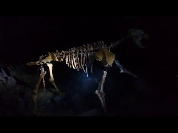 Пещера караульная.Поход с детьми в пещеру.